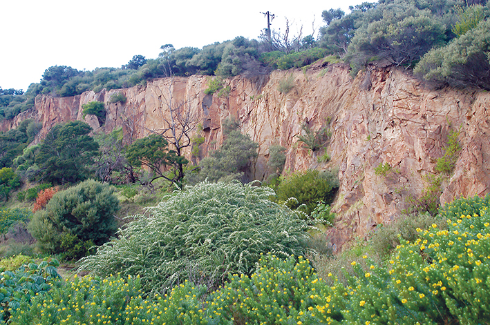 Nature reserve: Mornington Peninsula Shire is being urged to retain the disused Mt Martha quarry as a low key sanctuary with wetlands for birds and frogs instead of selling it to help pay for a swimming pool complex at Rosebud.
