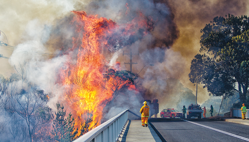 Freeway risks: A fire that started along the Mornington Peninsula Freeway at Dromana in January 2014 quickly spread into nearby Heronswood, destroying a thatched roof cafe. Picture: Yanni