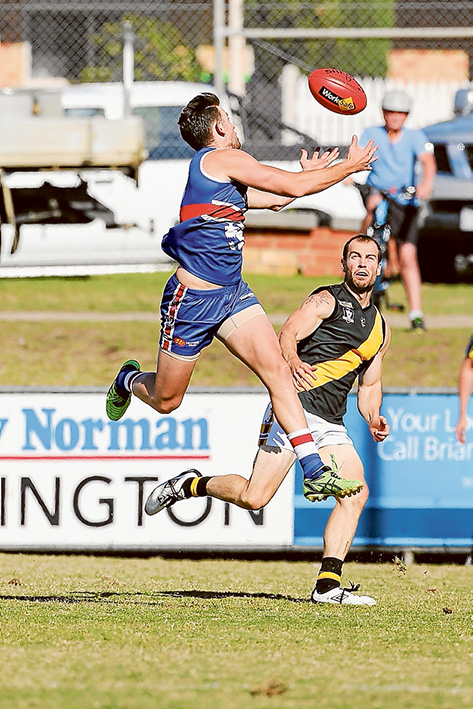 Tiger by the tail: Mornington scored a 34 point win over Seaford. Picture: Gary Bradshaw