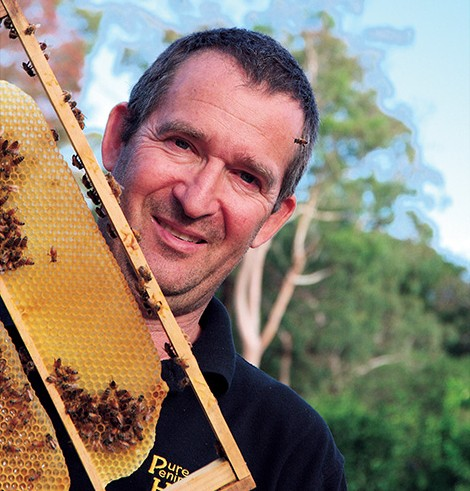 Hive watch: Bees swarm around one of the sentinel hives at Western Port. Picture: Keith Platt