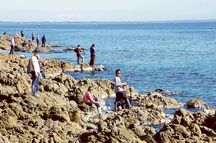 Fish assured: Fisheries Victoria says a drop in the number of snapper spawned in Port Phillip will not cause a loss in catch either in the bay or central and western Victorian waters. Picture: Keith Platt