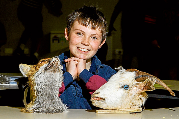 Heads count: Xavier Noonan's hobby ensures dead animals are not forgotten. Picture: Gary Sissons