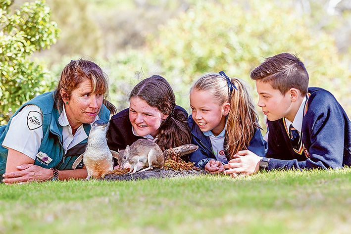 Feathers and fur: Tash Wicks from Parks Victoria, gives a natural history lessons to Siesiea, from Boneo Primary School, Mikaylay, Our Lady of Fatima Rosebud, and Oliver from Peninsula School. Picture: Yanni