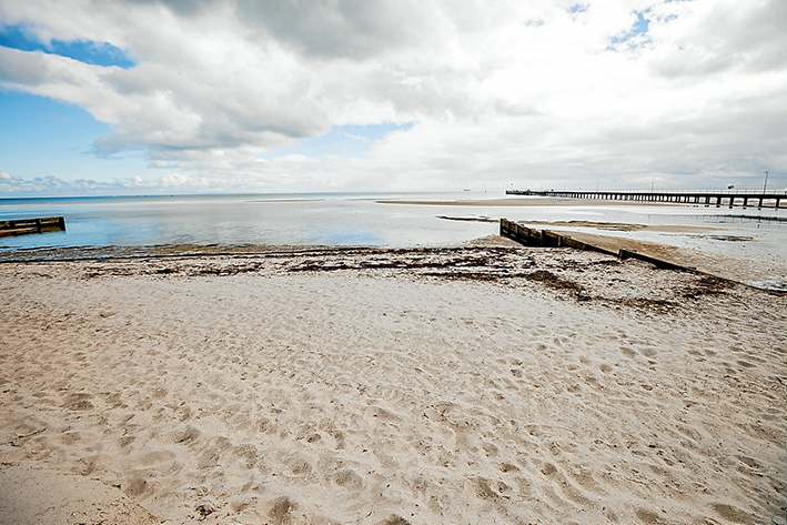Sand, man: The state government's environment department and the shire council are hoping the latest lot of sand placed on Rosebud beach near the pier will not be washed away like the last lot. Picture: Yanni