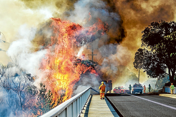 Dire warnings: A fire that started along the Mornington Peninsula Freeway at Dromana quickly spread into nearby Heronswood, destroying a thatched roof cafe. Although not officially listed as being deliberately lit, an arson expert says motorists reported seeing multiple along the freeway. Picture: Yanni