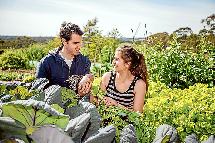 Salad days: THE peninsula's first weekly produce market is the idea of Rachael Koch, who grew up in Frankston, and Matt Taylor, of Mt Eliza. Picture: Yanni