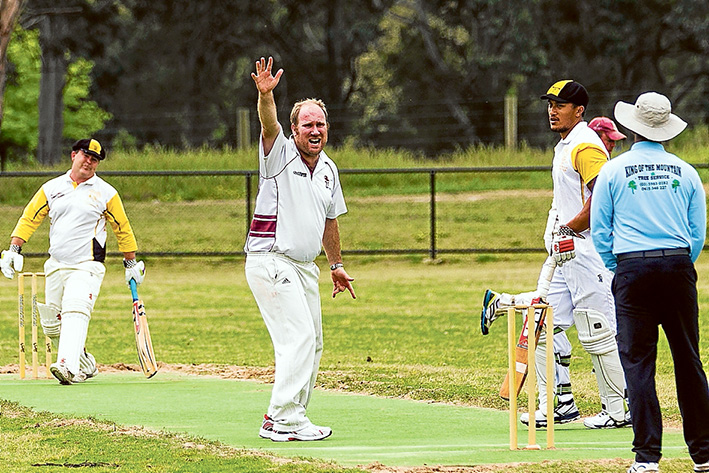 Wicket appeal: Frankston YCW fell short by just four runs against Skye. Picture: Andrew Hurst