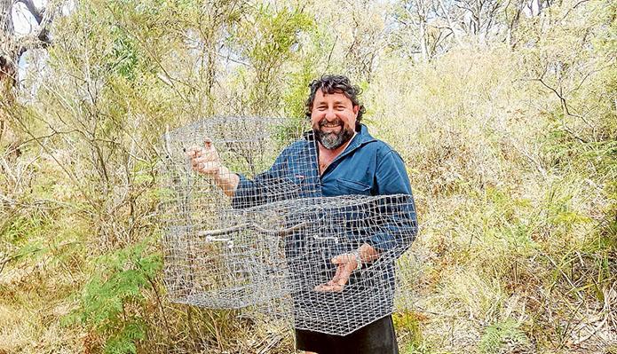 Wildlife threat: Southwest Mornington Peninsula Landcare Group president Rob Nigro with an Indian myna cage trap.