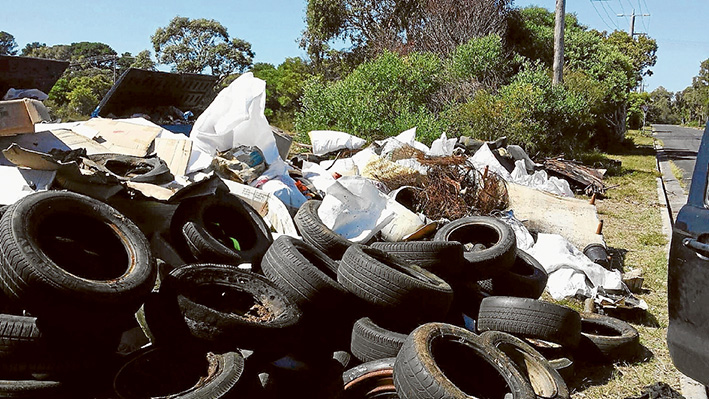 Thrown away: Saturday's community clean-up at Crib Point unearthed tonnes of rubbish. These tyres will be taken to the tip.