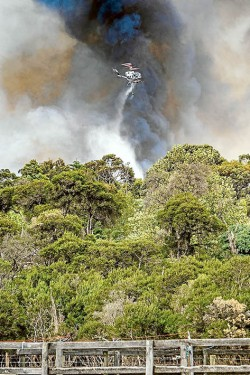 Sky fall: Helicopters drop retardant on Tuesday's Somerville fire. This picture, by photographer Gary Sissons, was taken near the Frankston-Flinders and Coolart roads intersection.