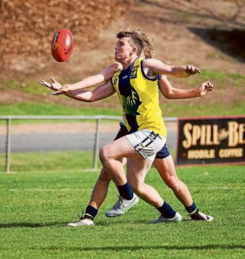 Under 19's Sharks attack: Nepean Sharks beat Yarra Ranges by 63 points. Picture: Andrew Hurst