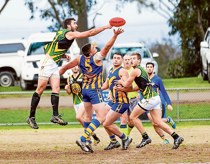 Tigers maul: Dromana accounted for  Somerville by more than six goals. Picture: Andrew Hurst