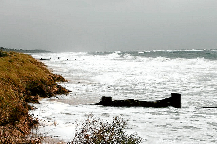 Losing battle: Environmentalists are calling for immediate action to save the Mornington Peninsula's eroding beaches.