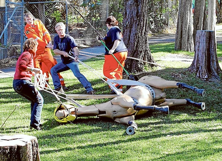 Race to rescue: Workshop participants will learn how to safely rescue large animals on this model. Picture: Supplied