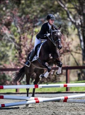 ruby-stubbs-national-equestrian-jumping-shot-png-jpg
