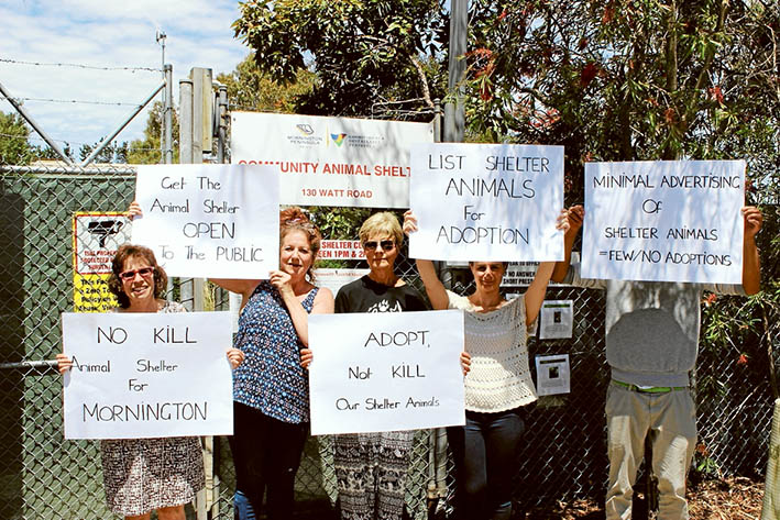 Signed up: Protesters want to lessen the number of cats being killed after being kept at Mornington Peninsula Shire's animal pound in Watt Rd, Mornington.