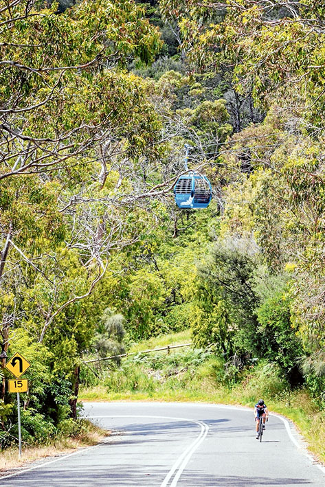 Arthurs Seat Chairlift Opening. Photo: